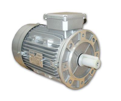 B5R motor